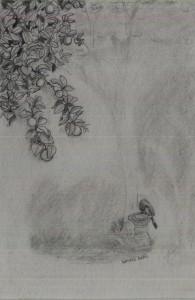 lemon tree (1)
