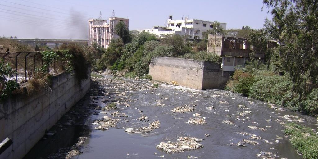 Most rivers near cities have become sewers: the Vrishabhavathy river in Bangalore (Photograph by: Priyanka Jamwal)