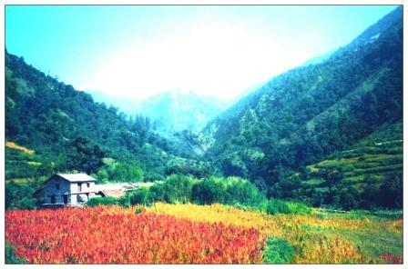 roopkund_image 3_colour