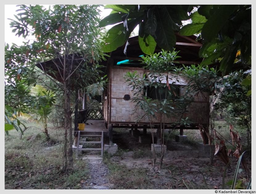 Stilt cottages at ANET