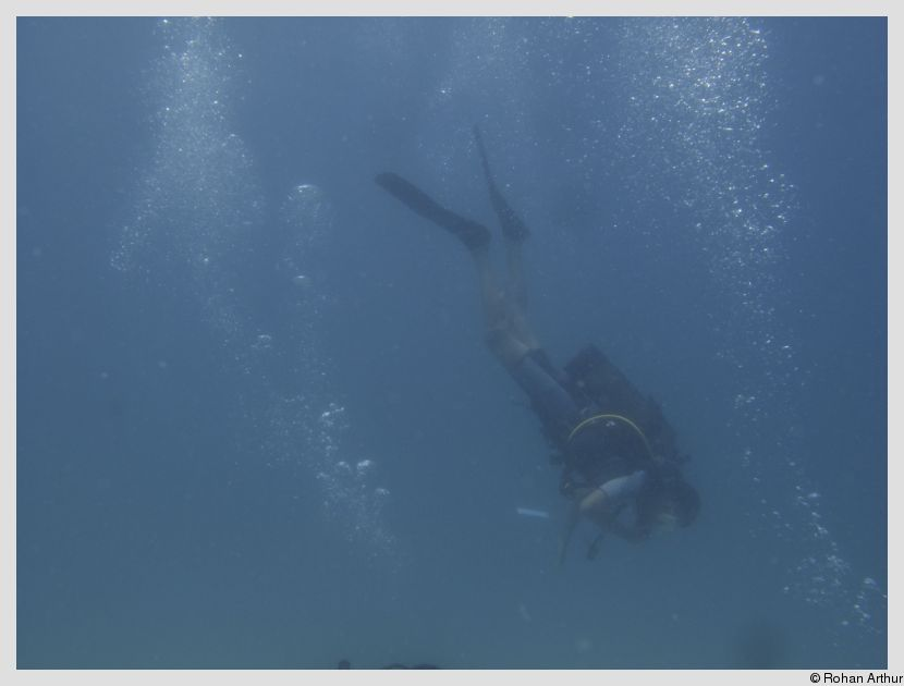 Yours truly, scuba diving